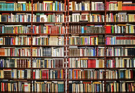 bookcase analogy the dementia society