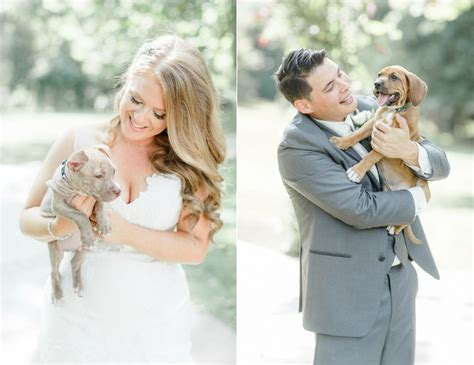 puppy bouquet wedding planning a wedding skip the flowers and get puppy bouquets instead mnn