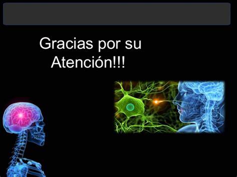 imagenes que digan grasias por su atencion el sistema nervioso central