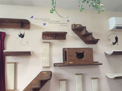 cat wall shelves climbing do you your cat trading phrases