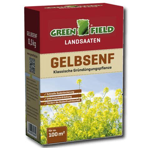 Ziergräser Für Den Garten by Greenfield Gelbsenf Gr 195 188 Nd 195 188 Nger