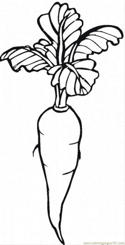 carrot coloring pages