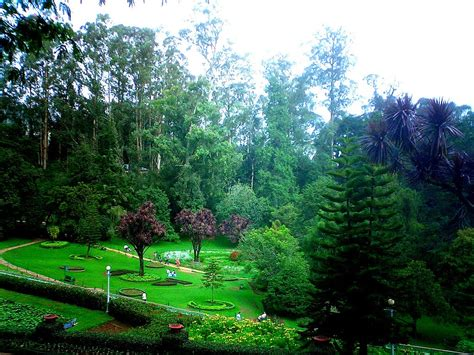 ooty botanical garden images highlights of ooty packages tourism in india