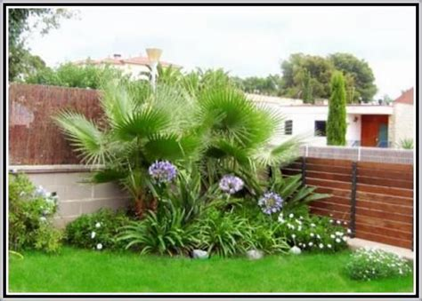 imagenes de jardines pequeños y bonitos fotos de jardines peque 241 os para casas bonitos jard 237 n