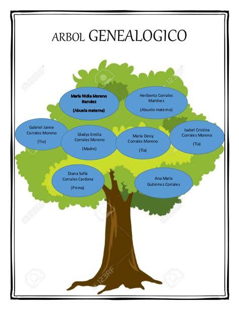 imagenes realistas de un arbol arbol genealogico