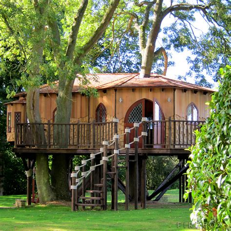 tree house blue forest tree houses firebox shop for the unusual