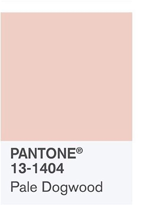 spring quiet color palette 25 best ideas about pink dogwood on pinterest pink
