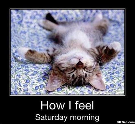 Funny Saturday Memes - happy saturday quotes funny quotesgram