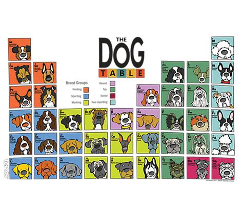 periodic table of dogs periodic table