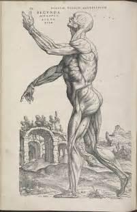 de humani corporis fabrica libri septem by andreas