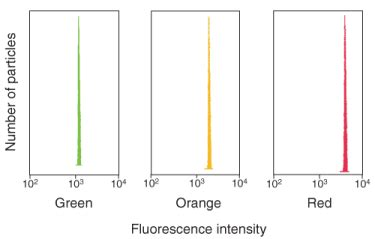flow cytometry calibration flow cytometer calibration and size reference