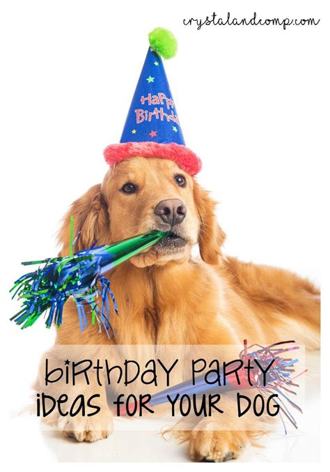 birthday party ideas   dog crystalandcompcom