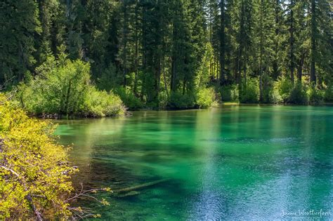 Clear Lake Cabins Oregon by Clear Lake Images
