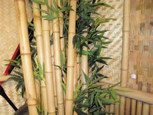 How To Decorate With Bamboo Sticks Quality Bamboo And Asian Thatch Decorating Your Business