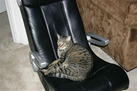 modded an xrocker pulse chair today beamng