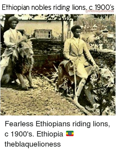 Ethiopian Meme - ethiopian nobles riding lions atheblaquelioness fearless