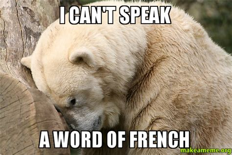 French Word Meme - i can t speak a word of french make a meme