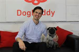 airbnb for dogs would you use a airbnb dogbuddy lets you meet rate and compare sitters