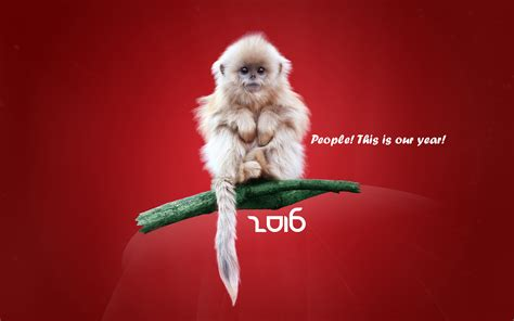 monkey wallpaper for walls year of the monkey 2016 wallpapers best wallpapers