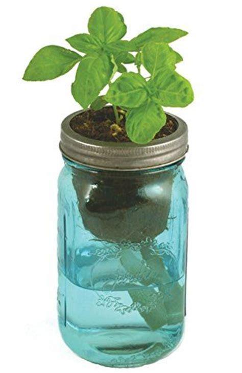 diy self watering herb garden herb garden kit self watering hydroponic countertop garden