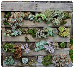 Vertical Pallet Gardens The Urchin Collective Diy Recycled Pallet Vertical