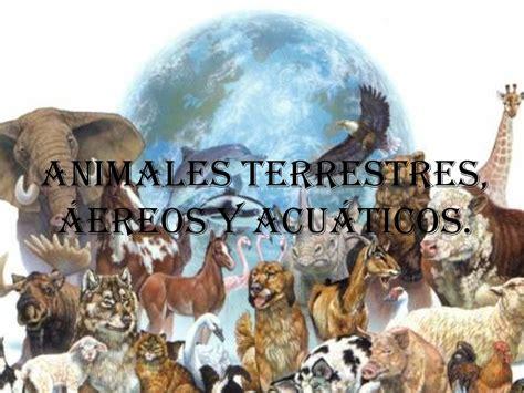 imagenes animales acuaticos y terrestres calam 233 o cartilla sobre los animales terrestres a 201 reos y
