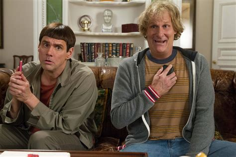 dumb and dumber review dumb and dumber to is a gentle but genuine farrelly bros comedy