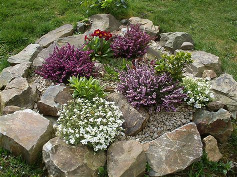 Small Rock Garden A Rock Garden Question The Garden