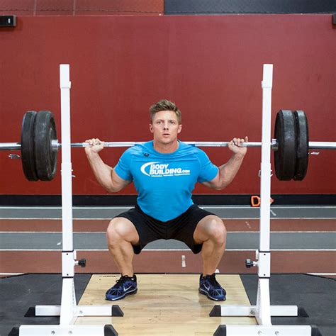 Barbell Fitnes barbell squat exercise guide and