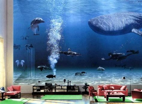 bill gates living room whale the gallery for gt bill gates living room whale
