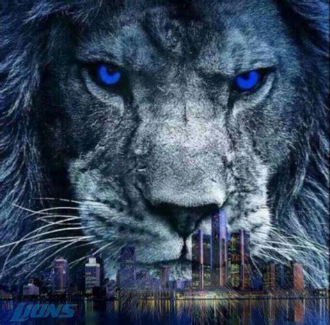 best 25 detroit lions colors ideas on detroit the 25 best ideas about detroit lions colors on