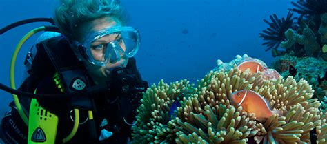 best place to dive the great barrier reef places to visit in australia the great barrier reef guide