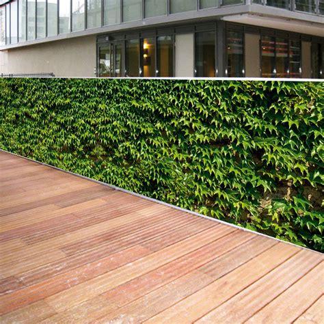Brise Vue En Toile Pour Terrasse by Brise Vue Toile Vigne Vierge 0 80 X 3