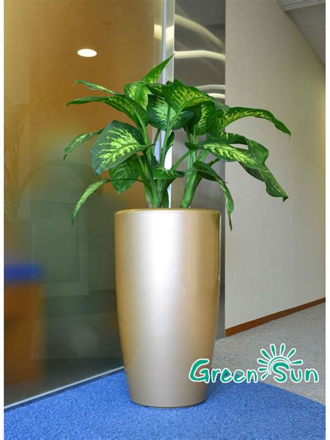 Modern Outdoor Planters Wholesale by Modern Outdoor Planters Flower Pot Wholesale View Modern