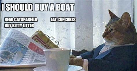 Cat Meme Boat - catsparella cat meme to do list reminds you to buy a boat