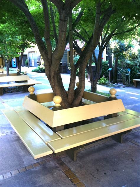 bench around tree trunk bench around a tree trunk tree benches pinterest