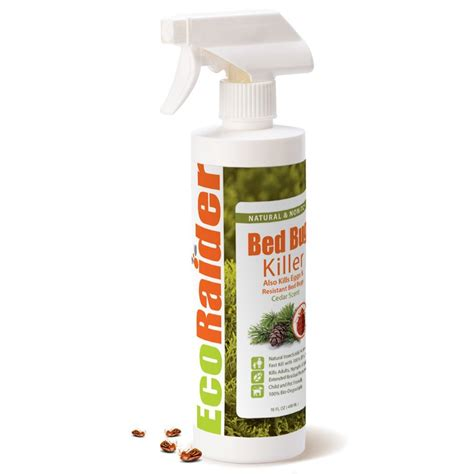 kill bed bugs top  products