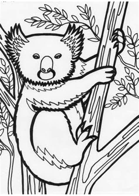 jungle tree coloring page jungle trees coloring pages www pixshark com images
