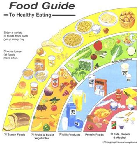 the curmudgeon s guide to home cooking and other feats books gffi fitness academy common home food remedies
