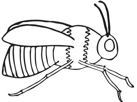 Coloring Page Of Bee by Free Coloring Pages Of Hive And Honey Bee