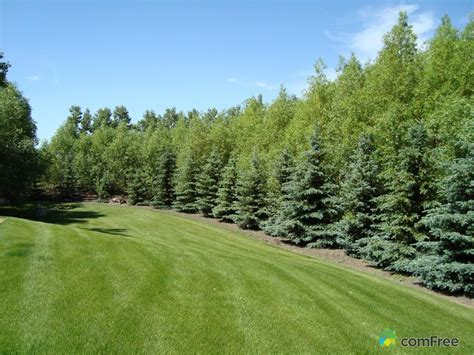 acreages for sale landscaping acreage landscaping ideas
