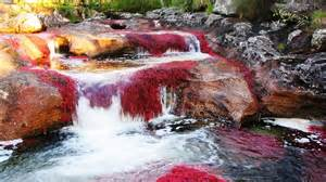 river of 5 colors the river of five colors cano cristales info