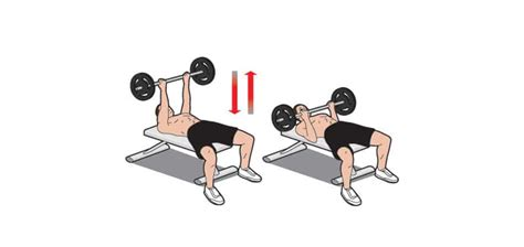 reverse grip decline bench press what everyone ought to know about the reverse grip bench