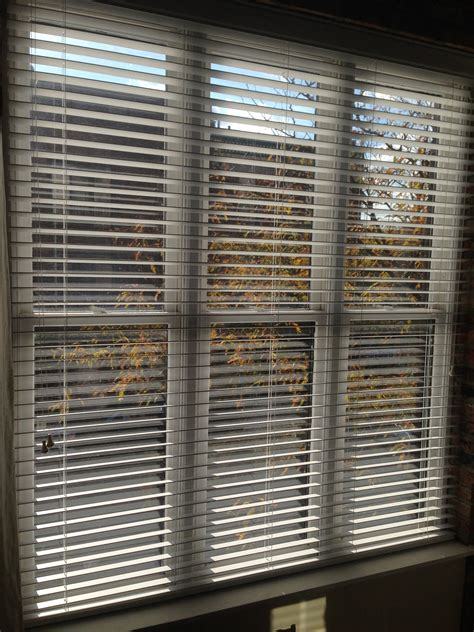 Chicago Blinds chicago wood blinds chicagoland storage solutions