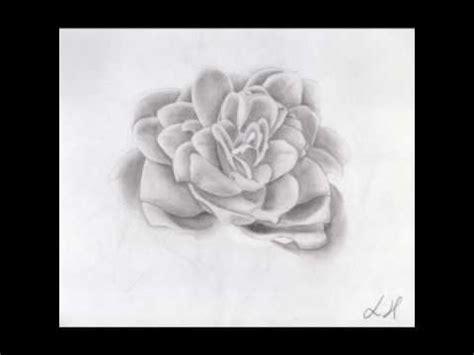 fiori disegnati a matita flower time lapse speed drawing disegno a matita fiore