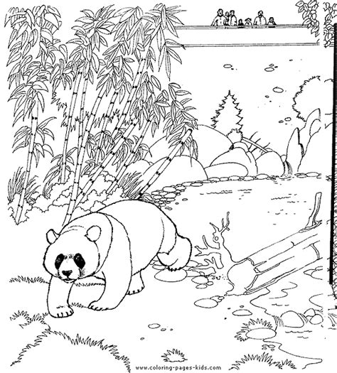 educational coloring pages zoo animals panda color page