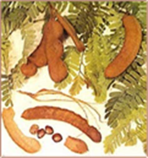 Permen Asam Asem Jawa Kiloan Curah permen asem jawa khas javanese tamarind murah halal tanpa pengawet dan baik