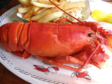 cape cod food food and restaurants in cape cod united states of america