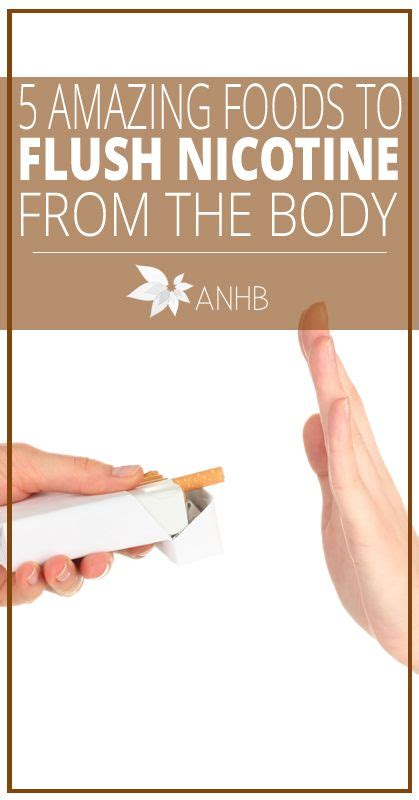 Heavy Smoker Detox 1 Day by Best 25 The Ideas On