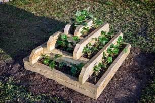 for building a strawberry pyramidinstructions